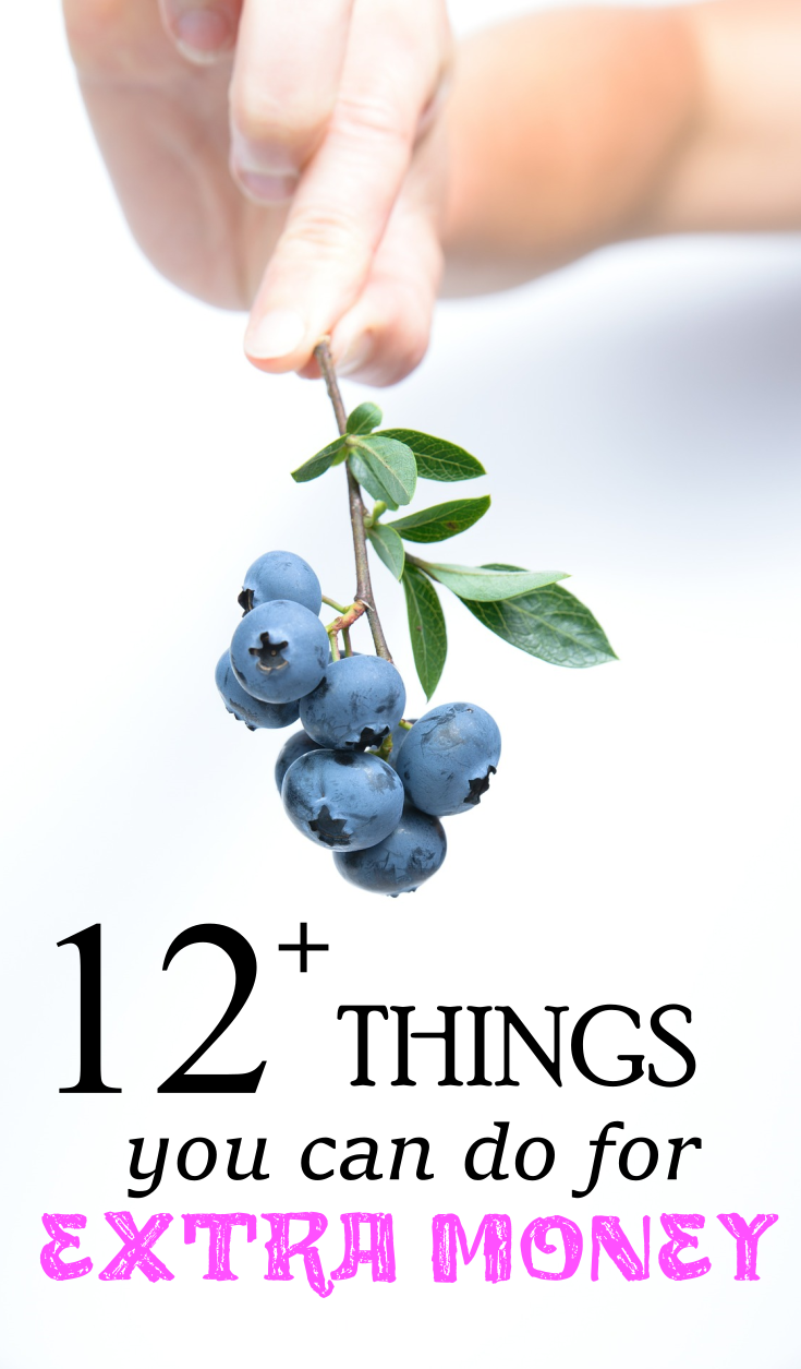 pinterest-things-you-can-do-for-extra-money