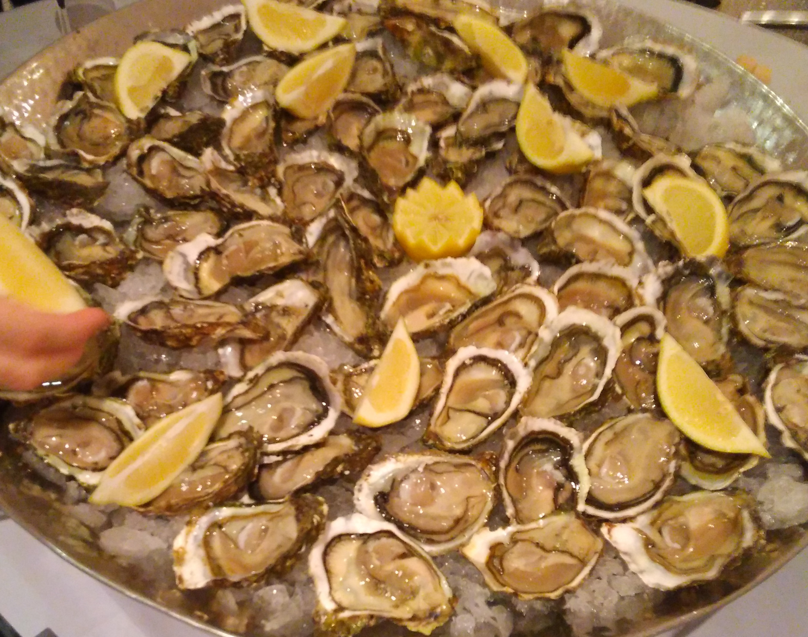 unlimited-oysters
